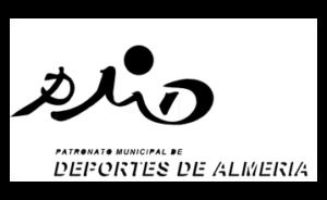 logos_pmd